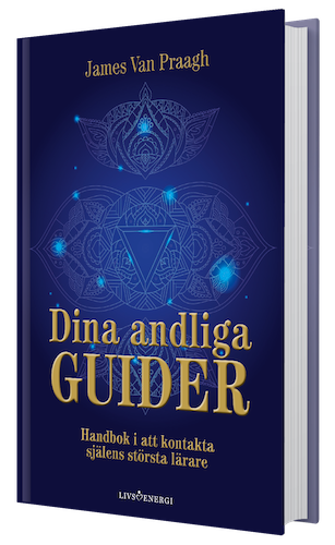 3D GUIDER (307x500)